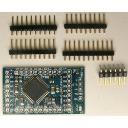 Mini-Max ByPic Microcontroller Board